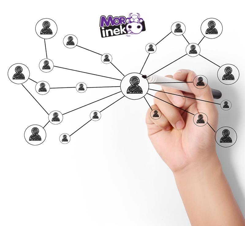 sosyal-medya-ajansi-morinek