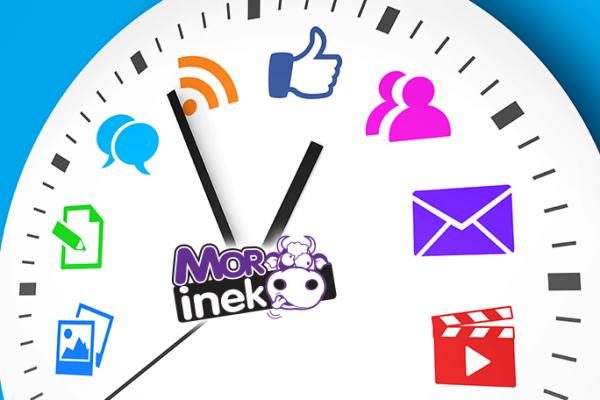 Dijital Medya Planlama Ajansı